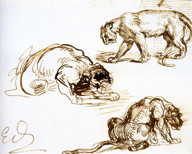 delacroix-lions