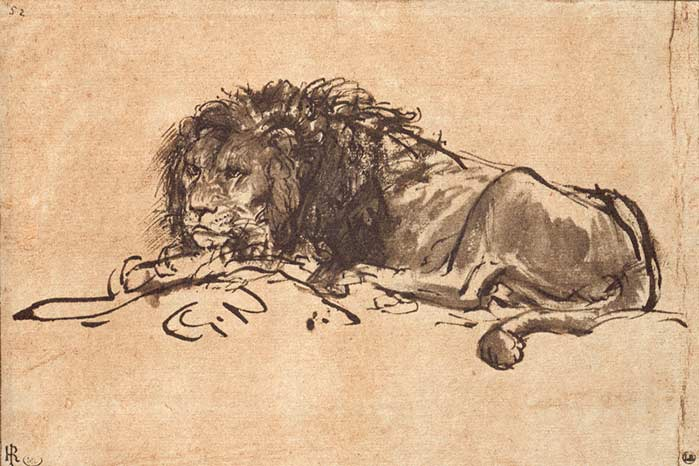 Contour Line Drawing Leonardo Da Vinci : The great lions of drawing drawingwell