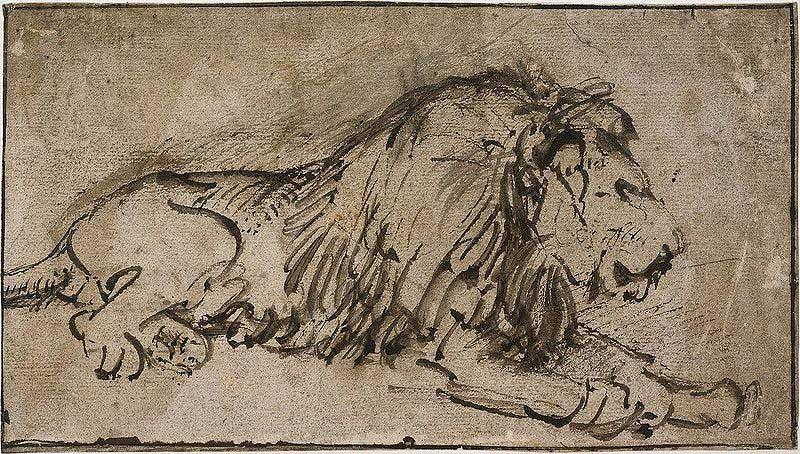 rembrandt-lion2