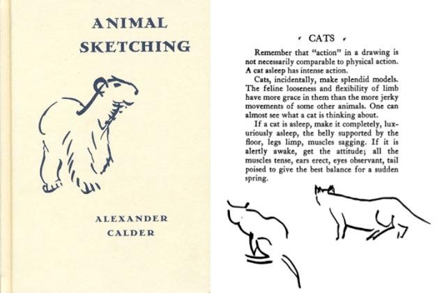 calder.animal.sketching