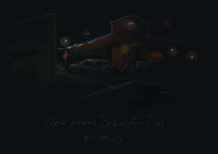 nw-trip-brandon-night
